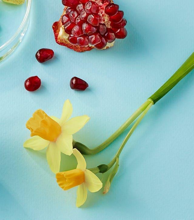 Chiết xuất từ hoa thủy tiên mở đường cho dưỡng chất thẩm thấu sâu vào da